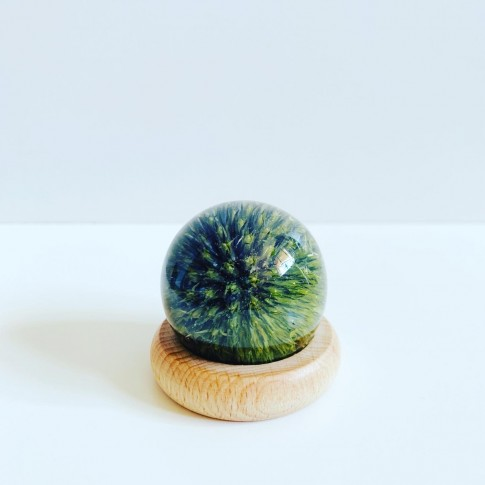 Esfera echinops