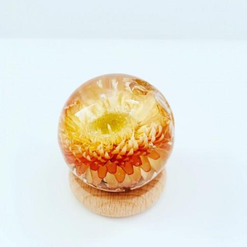 Midi esfera con Helichrysum