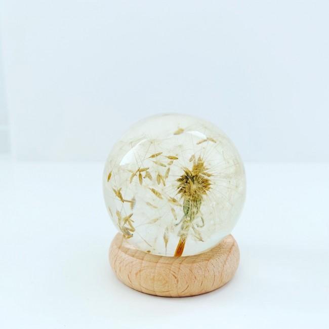 Midi esfera con diente de león 3