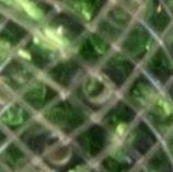 Dorada + verde
